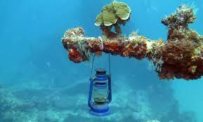 Real Underwater World Real Underwater World U Nongzico