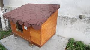 Traditional Backyard Decoration With Diy Heated Outdoor Cat House