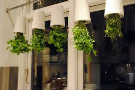 Kitchen Herb Garden Planter Similiar Kitchen Herb Garden Keywords