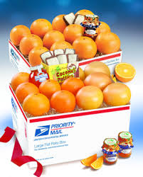 premium florida oranges and gfruit in a jumbo equiv pack shipped to us including alaska
