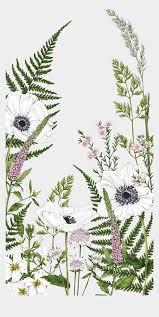 Flower Drawing Phone Wallpaper