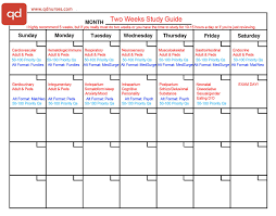 week time schedule template 2 study plans you need to pass the nclex qd nurses