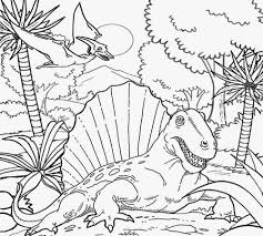Free B Swamp Coloring Pages