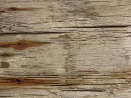 white wood texture. Stained White Wood Texture With Deep Cracks And Heavy Brown Rust Staining.