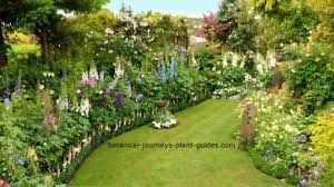 Small Picture Perennial Flower Garden Design Ideas Inspiration Plant Lists