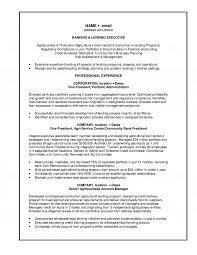 Lending Executive Resume Banking Ands Credit Officer Job Description