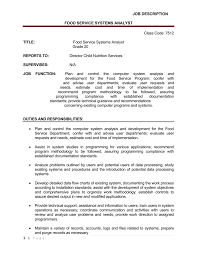 Job Description Food Service Systems Analyst 1 Page