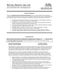 see more samples  Sample Executive Resume