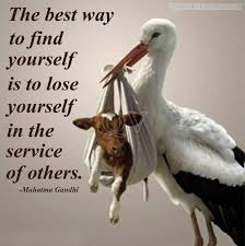 Social Work Quotes Adorable Social Service Quotes Sayings Pictures And Images