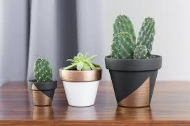 Uncategorized, Modern Succulent Container Gardensanter Pot Diy Outdoor Mini  Paintedant Pots: Modern Succulent Planter