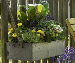 Säge zwei bretter mit einer höhe von 15 x 100 cm zu, bei dem dritten brett ziehst du von der höhe die dicke der holzplatte ab, damit du am ende. Balkonkasten Ideen Fur Alle Jahreszeiten Zum Nachpflanzen Living At Home
