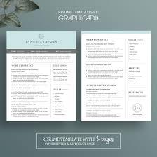 Resume Modern Resume Sample