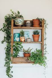 Decorative Kitchen Shelf 1000 Ideas About Plant Shelves On Pinterest Kitchen Shelf