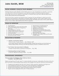 Examples Of Summaries For Resumes A Good Summary For A Resume Best Executive Summary Resume Best Good