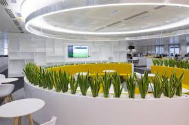 modern office plants. Indoor Plants In A Modern Office Interior. R