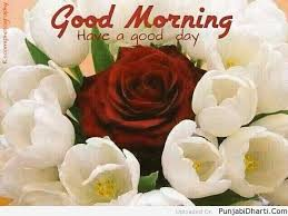 good morning images graphics for facebook twitter