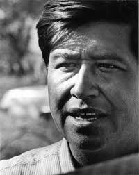 "as deceivers yet true"" essay book review farmworker movement  cesar chavez"