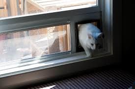 cat door insert for sliding window sliding doors with regard to sizing 1600 x 1067