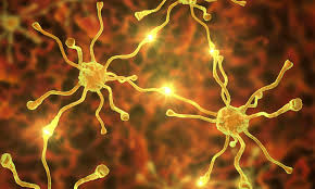 motor neuron disease electrical