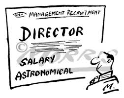 Director Salary not excessive in absence of any material on record