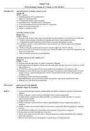 Junior Consultant Resume Samples Velvet Jobs
