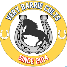 A Very Barrie Colts Blog Podcast Podtail