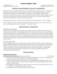 Federal Government Resume Examples Delectable Federal Resumes Samples Free Professional Resume Templates