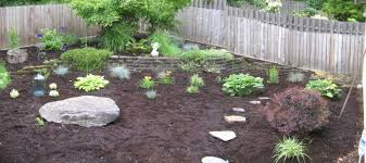 Small Picture Landscape Beautiful Garden Design Ideas Low Maintenance With Rock