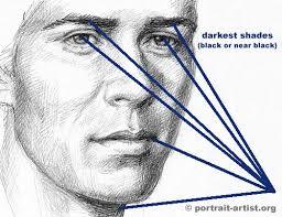 eyebrow shading drawing. shading - man eyebrow drawing