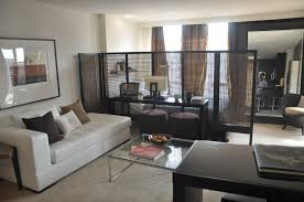Double Duty Dividers Decorating Ideas For Nyc Studio Apartment - Decorating studio apartments on a budget