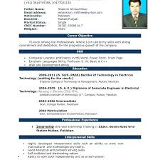 Curriculum Vitae Template Word Professional Absolute Though Ms ...
