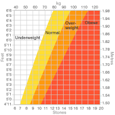 Height To Weight Ratio Bbc News In Detail