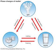 Term 1 - Science SpotMrs. MacCaul