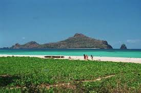 Image result for Moheli | Travel locations, Travel, Comoros islands