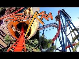 riding the awesome sheikra roller coaster at busch gardens ta amazing 4k 60fps front seat pov