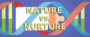 Discuss the nature nurture debate in relation to individual     Essays on nature vs nurture