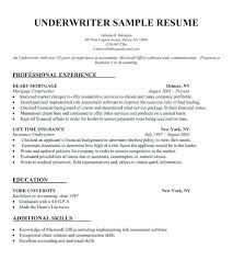 Build Your Resume Free
