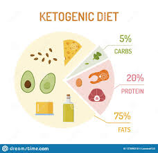 Food Chart Carbohydrates Fats Protein Keto Diet Chart Stock Vector Illustration Of Carb Isolated