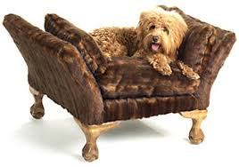 designer dog bed furniture. Exellent Bed Luxury Dog Beds The Perfect Choice 1966 Magazine With Regard To Fancy  Furniture Design 17  Throughout Designer Bed