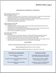 Resume Sample For Business Owner Professional Resume Templates