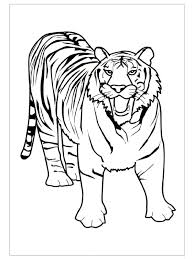 Small Picture free Tiger coloring pages ideas for preschool Preschool Crafts