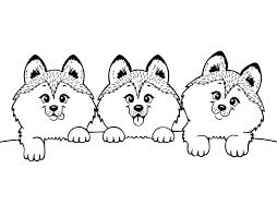 Disegno Di 3 Cuccioli Da Colorare Stampare O Scaricare Colora