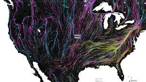 Wildlife Movement Chart Migration In Motion Visualizing Species Movements Due To