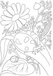 Spring Coloring Sheets For Kids F5982 Spring Coloring Pages Kids
