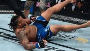 Greg Hardy Knocked Out By Tai Tuivasa ...
