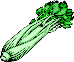 celery clipart black and white. Svg Library Stock Celery Clipart On Black And White