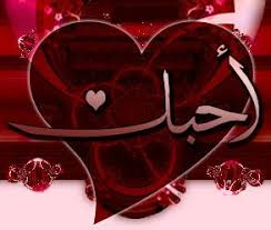 هـــــــــــــــــدية من اغلى صديقة ✿●✿• ورده اليمن  •✿●✿• Images?q=tbn:ANd9GcQX6uOQP5GClPGlyNtQW5Au6rTh-B6iMQ6tHC8MYa_9-HyU6fln