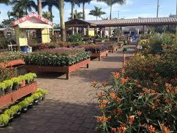 flamingo gardens nursery.  Nursery Butterfly Pavilion At Flamingo Road Nursery With Gardens M