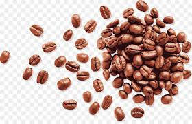 coffee beans png. Exellent Png Coffee Bean Espresso  Vector Handpainted Coffee Beans Inside Beans Png N