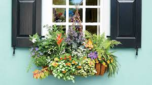 Flower box design Garden Pinterest Add Charm With Window Boxes Southern Living
